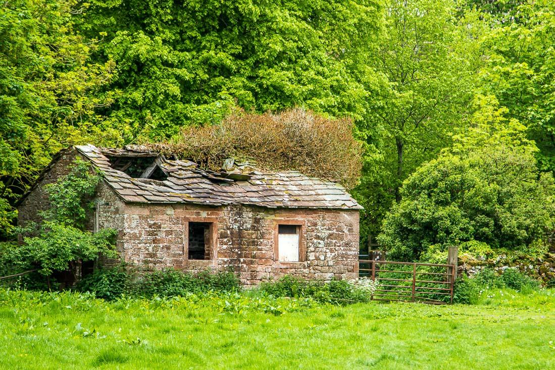 Ruined old barn near Newbeggin