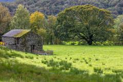 Near Rosthwaite