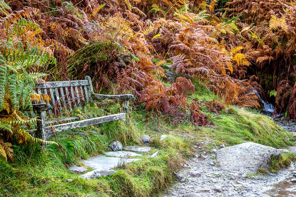 Bench on Loughrigg Terrace