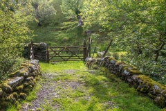 Folly Bridge, Borrowdale