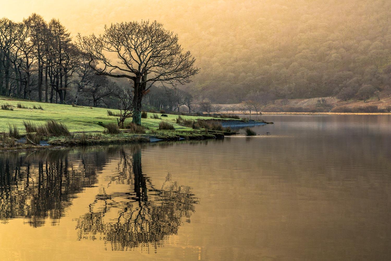 Crummock Water at dawn