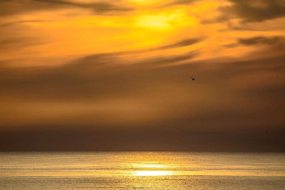 Northumberland coast dawn