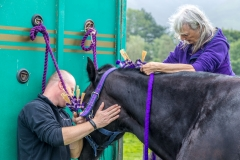 Loweswater-Show-2018-3