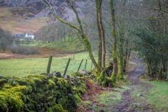 Lanthwaite Green