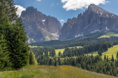 Sassolungo and Sassopiatto, Alpe de Siusi meadows, Dolomites