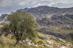 Mortitx, Mallorca