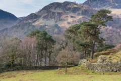 Glenridding Dodd