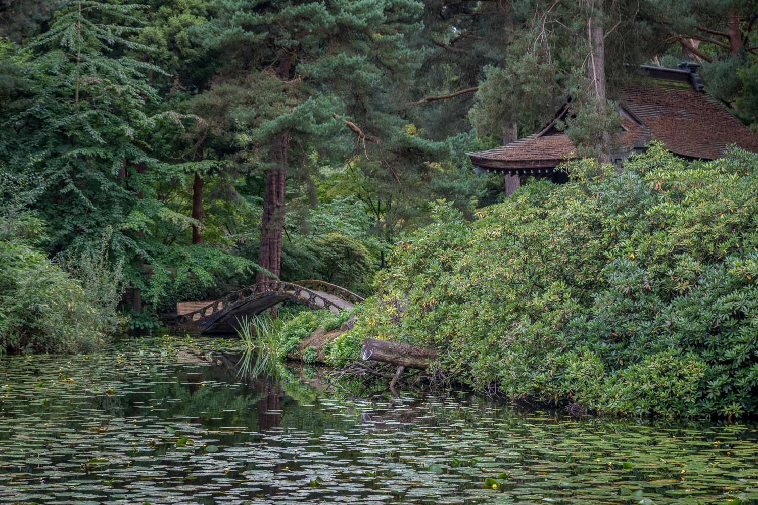 Japanese Garden, Tatton Hall