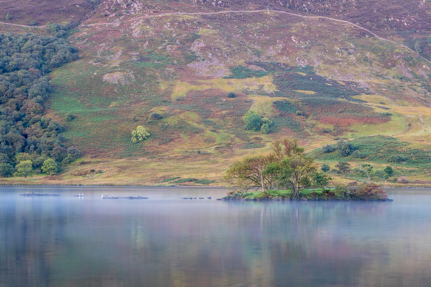 Woodhouse Islands Crummock Water