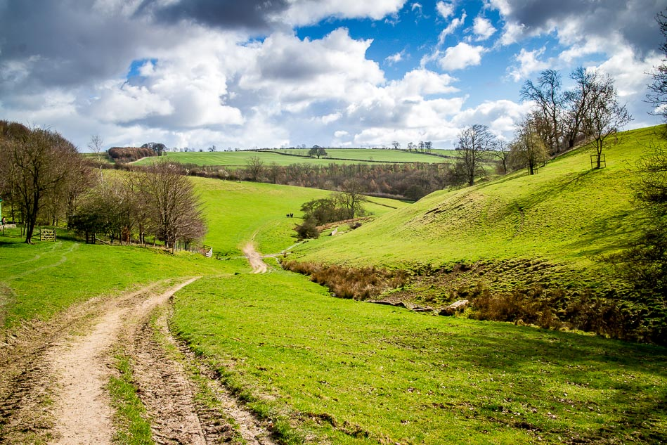 Yorkshire Wolds near Bishop Wilton