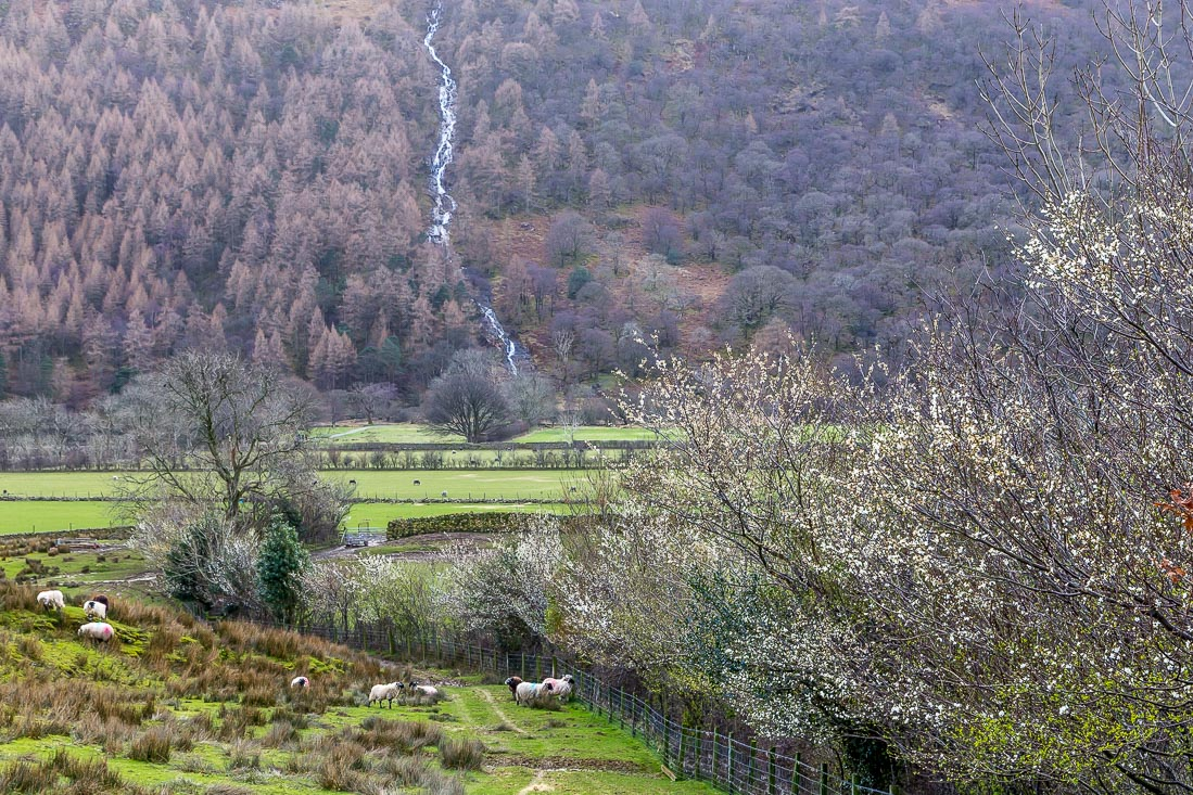 Scale Force Buttermere