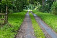 Moor Lane, Hambleton Hills