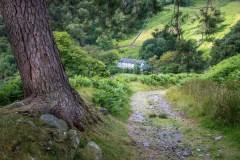 Path to Seatoller, Borrowdale