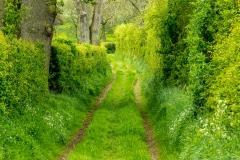 Frith Lane, Eden Valley