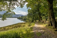 Loweswater-23-27