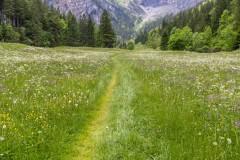near Kandersteg