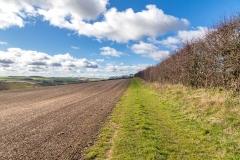 Raisthorpe Wold North Yorkshire