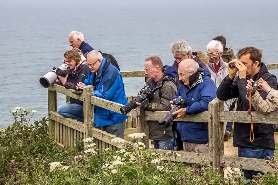 Photographers on Bempton Cliffs
