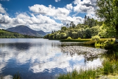 Loweswater7-42