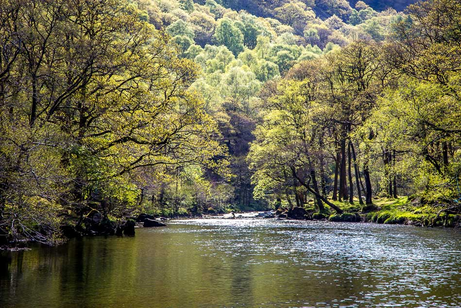 River Derwent, Borrowdale