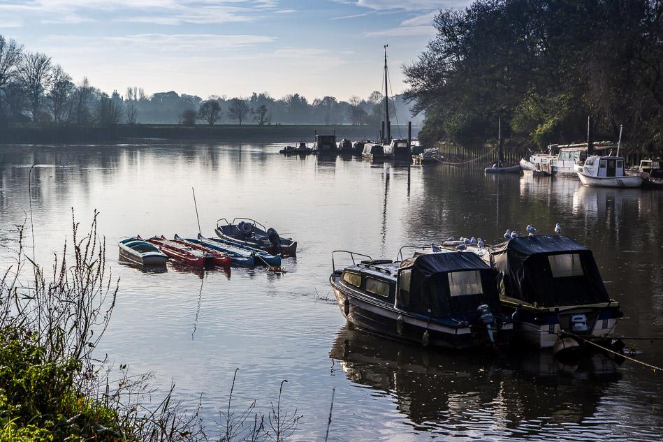 River Thames, Richmond Park