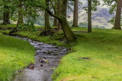 Hassnesshow Beck, Buttermere