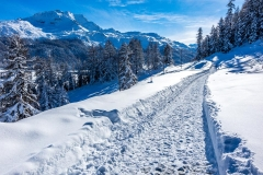 Silvaplana, Swiss Alps