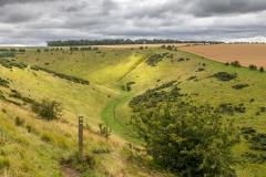 Sylvan Dale, East Yorkshire