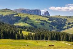 Alpe de Siusi plateau, Dolomites