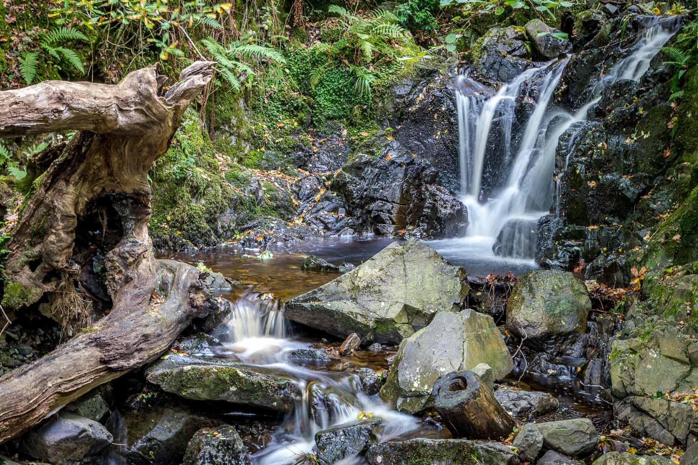 Cat Gill waterfall in Great Wood Borrowdale