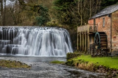 Rutter Force today