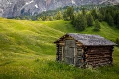 Armentara wild flower meadows, Dolomites