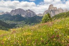 Pralongia ridge, Dolomites