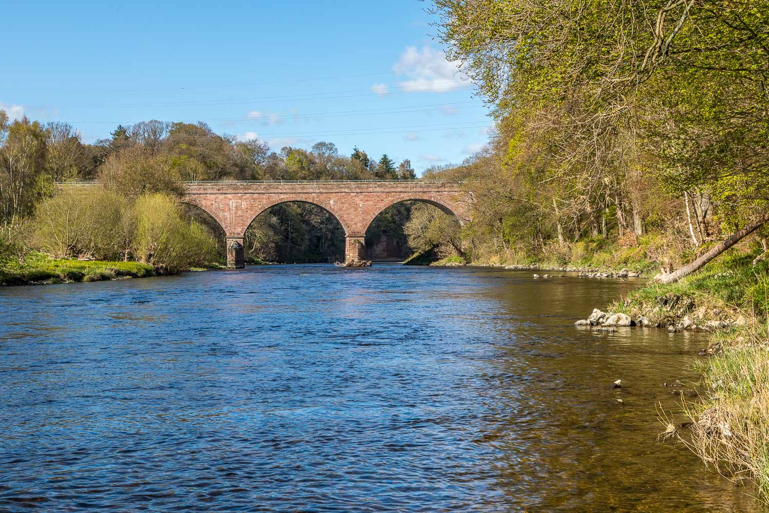 River Tweed,  Abbotsford