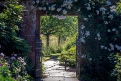 Acorn Bank garden