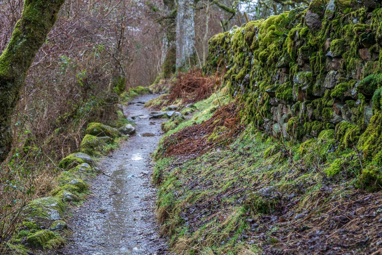 Aira Beck walk