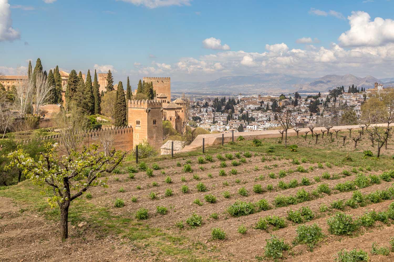 Alhambra-98