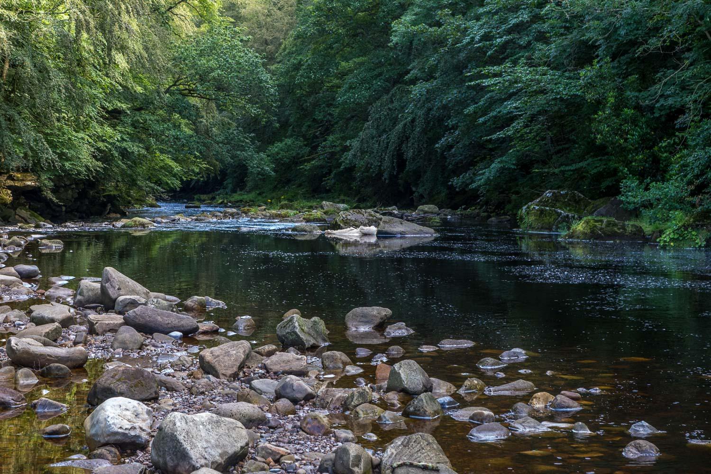 Allen Banks walk, Staward Gorge, River Allen