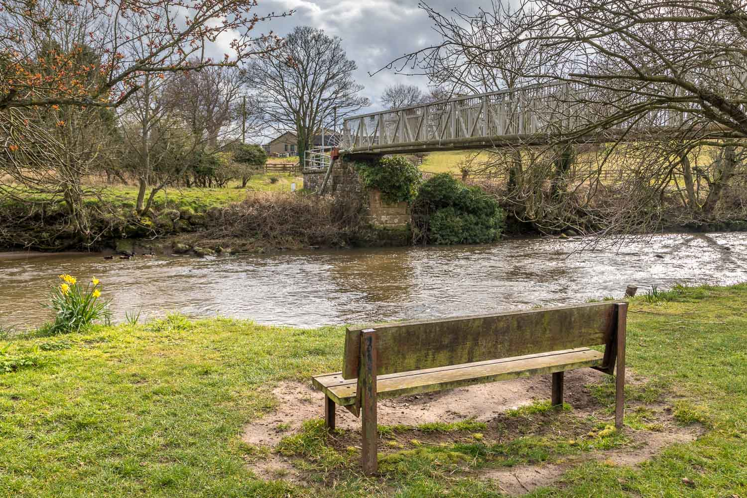 Lesbury, River Aln, bench