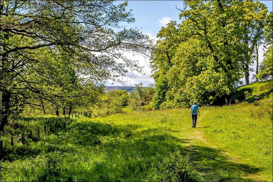Alnwick walk