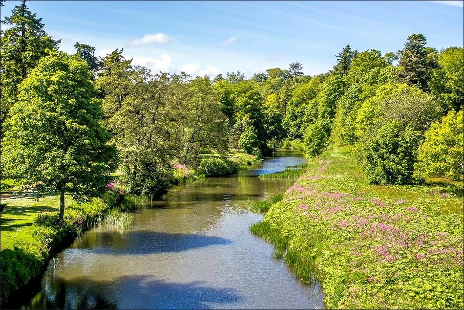 River Aln from Lion Bridge