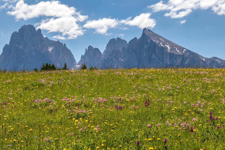 Alpe de Siusi-18