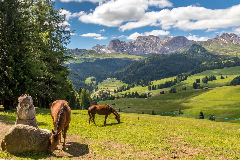 Alpe de Siusi-23