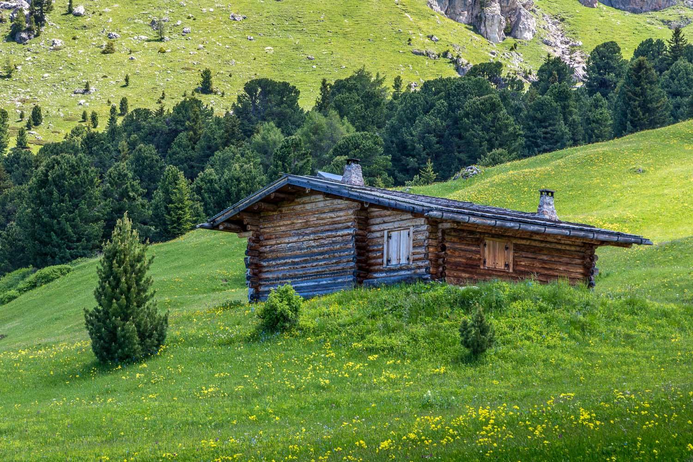 Alpe de Siusi-56