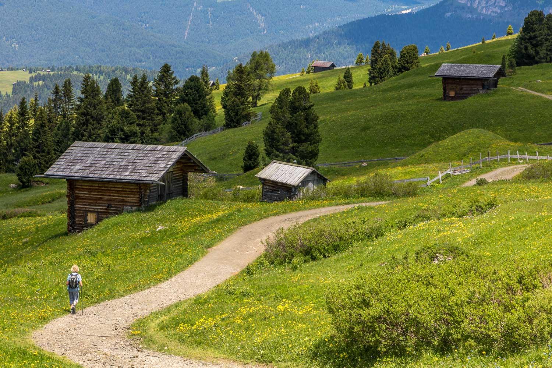 Alpe de Siusi-57