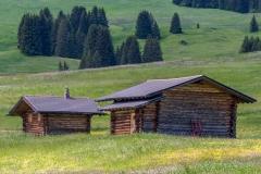 Alpe de Siusi barns