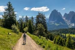 Alpe de Siusi walk