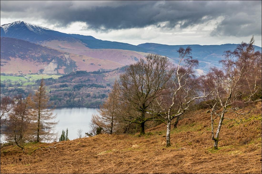 Falcon Crag walk, Lake District, Grisedale Pike