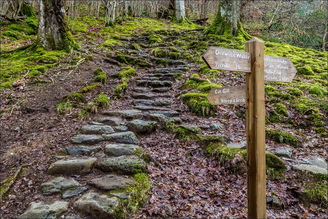Falcon Crag walk, Lake District, Cat Gill