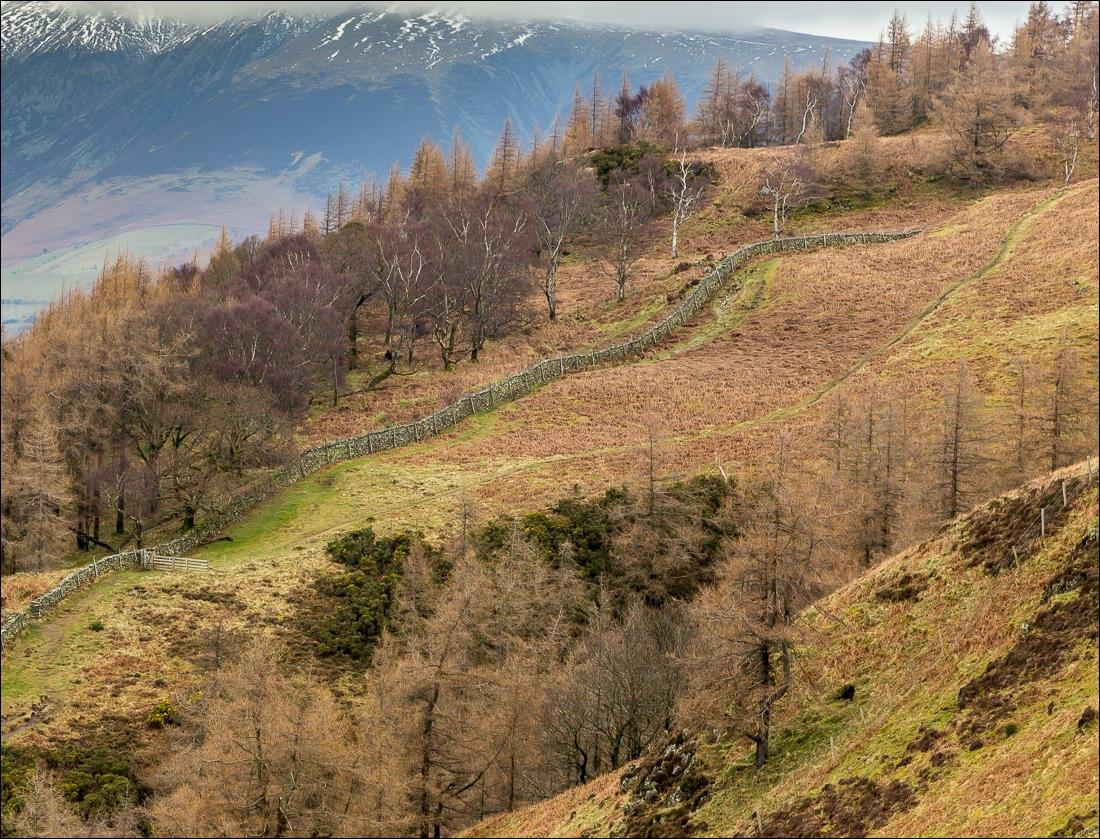 Falcon Crag walk, Lake District